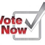 Festivalvoting 2012 // Partysan Poll